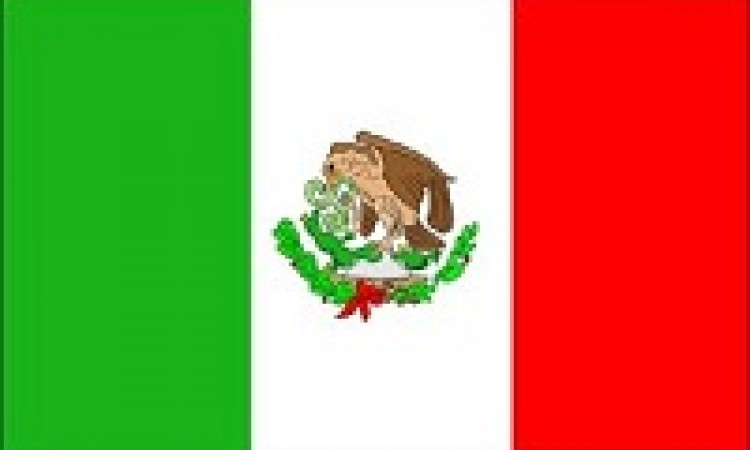 Mexico Signs onto ACTA
