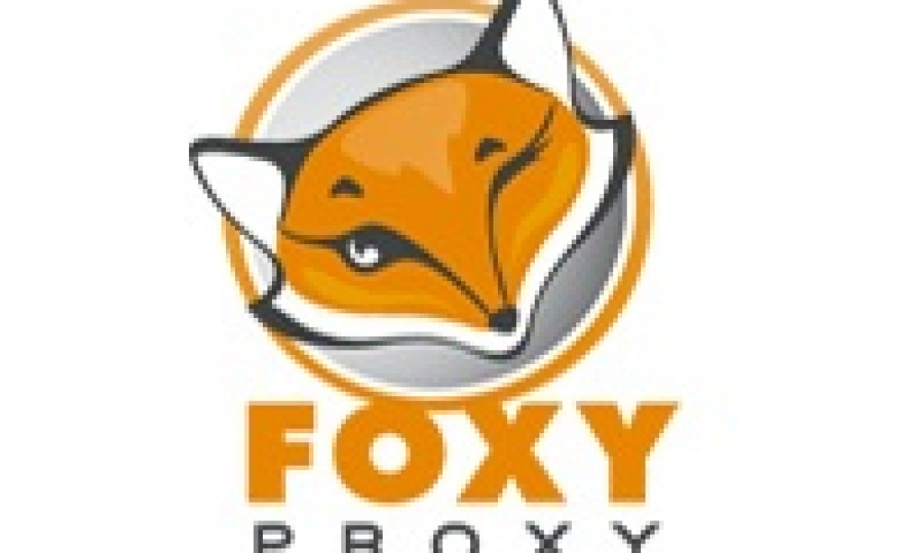How to Defeat US DNS Censorship (Using Foxy Proxy)