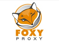 Guide: How to Defeat US DNS Censorship (Using Foxy Proxy)