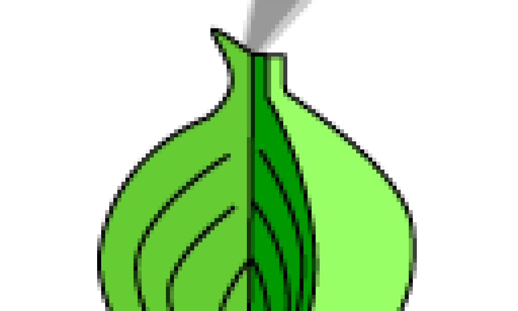 How to Defeat US DNS Censorship (Using Tor)