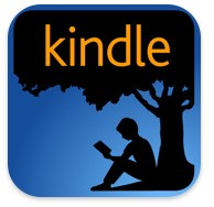 how do kindle books work